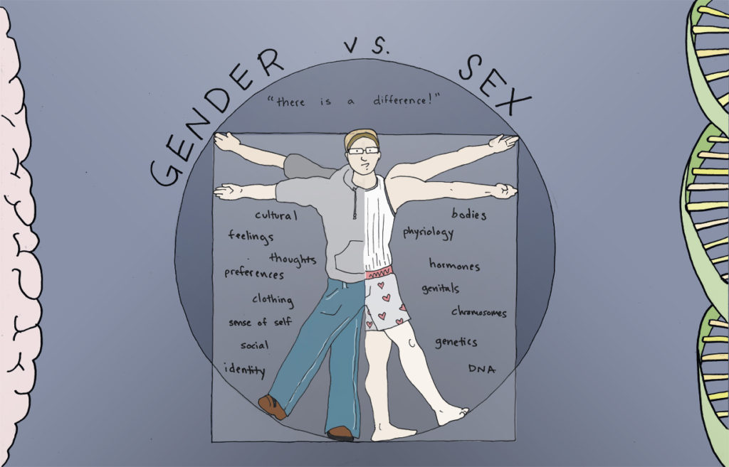 The GENDER book(let) | GENDER book creators | Round 3 (2011) | The Idea Fund